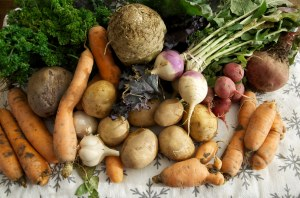 stoneledge farms CSA (Community Supported Agriculture) Local Farming Week Twenty-Four